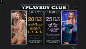 Playboy Slot features